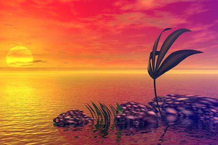 descend: Sea. Sunset
