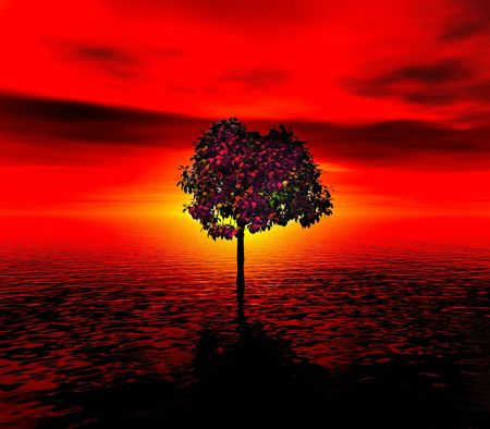 Lonely tree . Red sunset