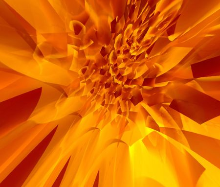 Fire flower photo