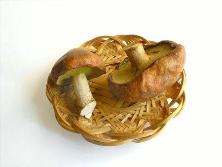 unusual vegetables: Two edible funguss in basket