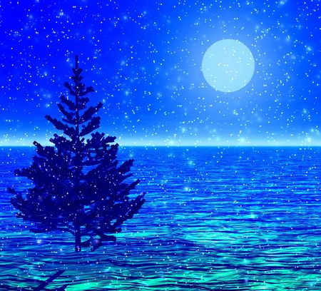 Christmas-tree in a moonlight. Stock Photo - 434079