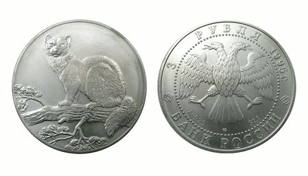 silver fox: Rusia de una colecci�n de monedas de plata de 1995. Zorro polar