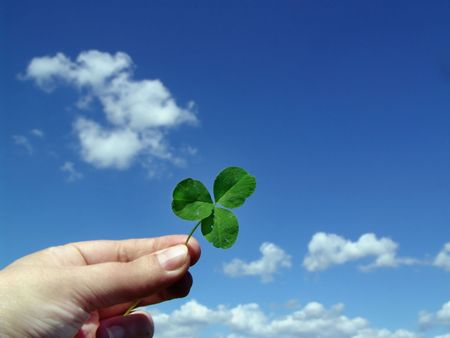 Leaf of clover in hand on a background blu sky
