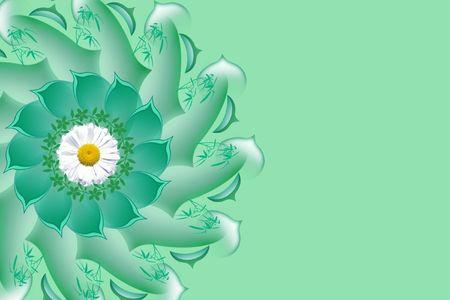 oxeye: Ox-eye daisy. Card