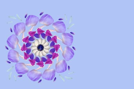 compliments: Background for card with violet petals