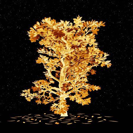 Night . Golden oak Stock Photo - 496223