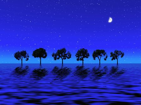 Night picture with trees Stock Photo - 510665