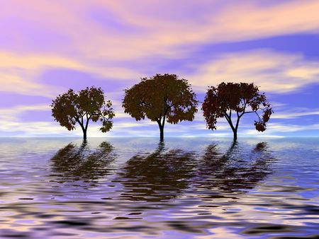 Trio trees. Evening Stock Photo - 522414