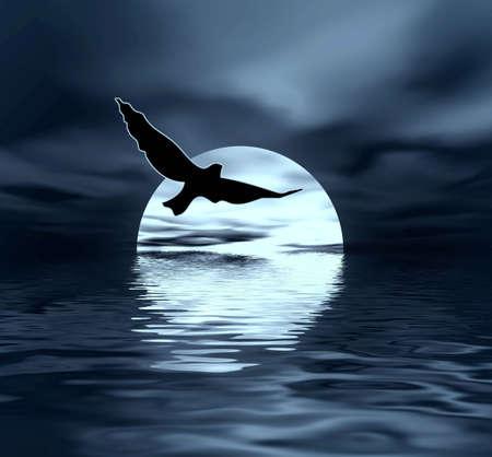 Lune et les oiseaux
