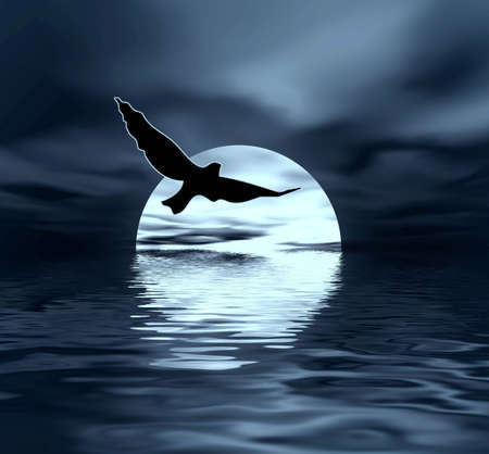 Maan en vogel Stockfoto