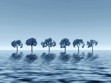 tranquillity: Monochromatic picture with trees