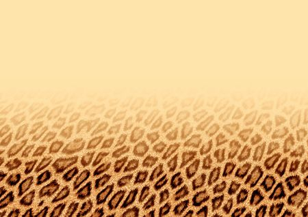 Background of fur Stock Photo