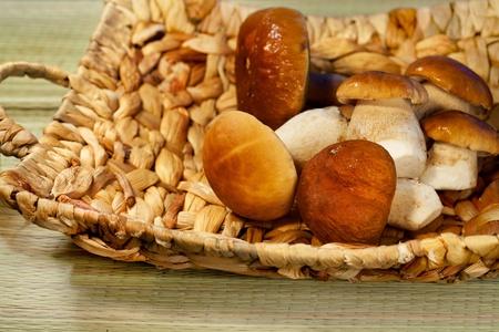 basketful: Autumn season, mushroom cep in a basket