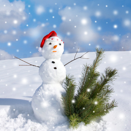 Snowman and pine christmas tree, winter scene photo
