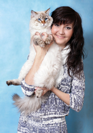 Charming young woman with Siberian cat on blue background photo