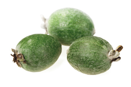 fresher: Food  ingredients -  fruit Feijoa isolated over white background