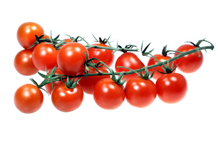 fresher: Food  ingredients - cherry tomatoes isolated over white background Stock Photo