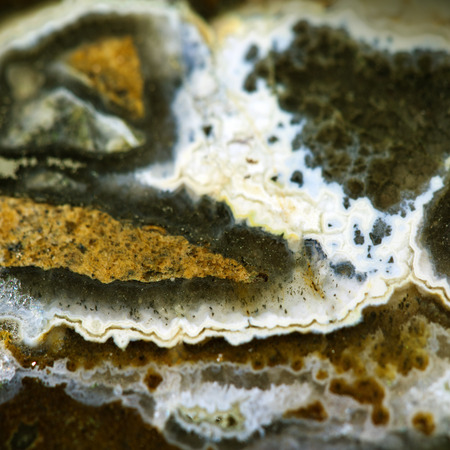 chalcedony: Texture of nature -  Jasper landscape agate close - up