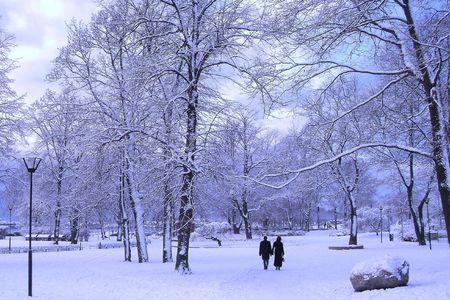 Pareja en el parque de invierno  Foto de archivo