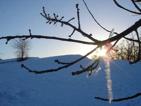 Spring. Icicle on the sun