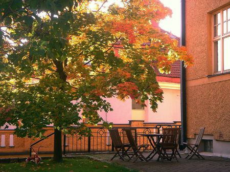 City Courtyard  in the Fall