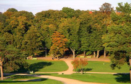 The autumn park