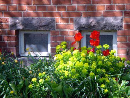 Flores sobre un fondo de una pared de ladrillo  Foto de archivo