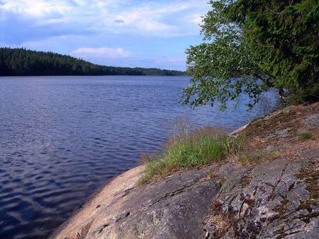 Madera lago en verano Foto de archivo