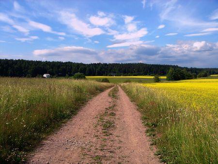 Paisaje rural. Camino, prado, el cielo y nubes