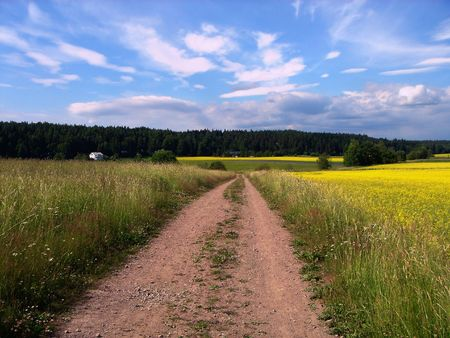 Rural landscape. Road, meadow, the sky and clouds photo