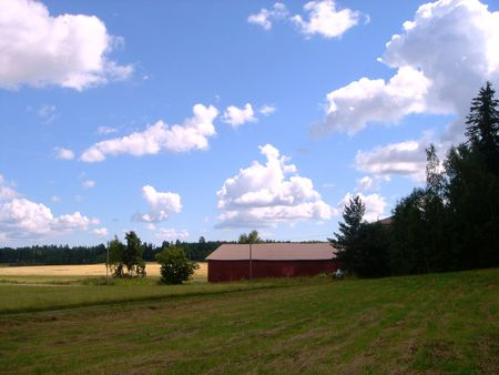 Rural landscape. Meadow, the sky and clouds