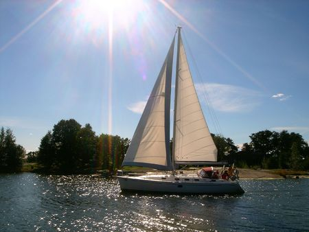 fisher animal: Sailing Stock Photo
