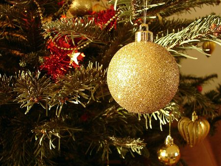 The gold sphere hangs on a Christmas tree                             photo