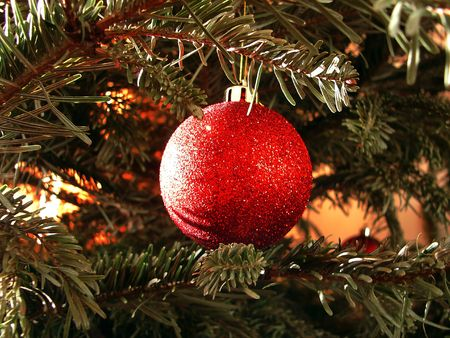 The red sphere hangs on a Christmas tree photo