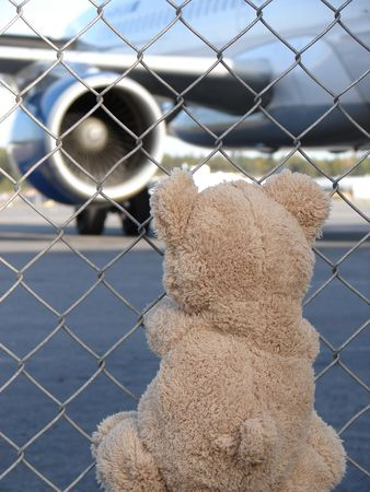The Toy Teddy Bear meets the plane at the airport photo