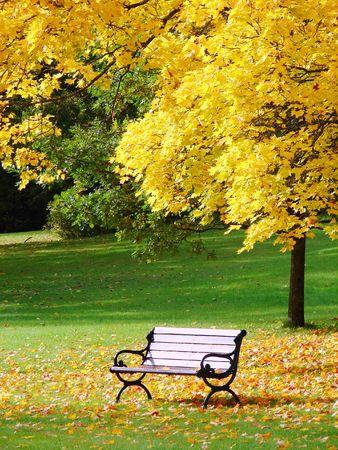 Parque de la ciudad en oto�o  Foto de archivo