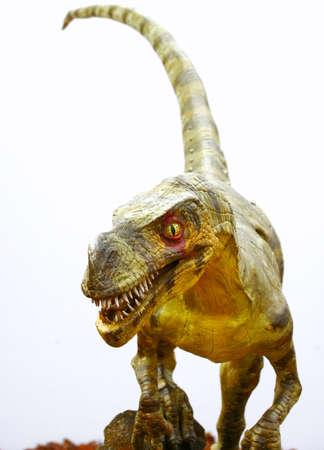 Ornitholestes dinosaurio en blanco Foto de archivo