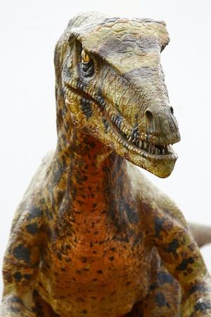 Deinonychus dinosaurio  Foto de archivo - 9550915
