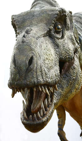 dinosaur teeth: Dinosaur Tyrannosaurus rex on white