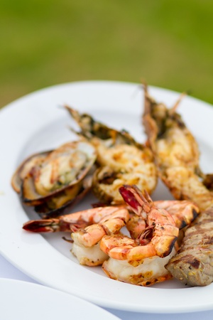 Delicious looking grilled food on plate Stock Photo - 9919170