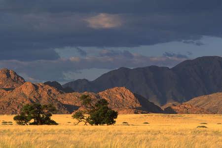Desert landscape near Sossusvlei, Namibia