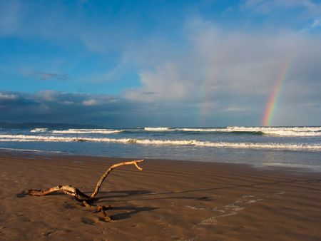 Beach scenic late afternoon with driftwood in the foreground and a rainbow on the horizon Stock Photo - 596243