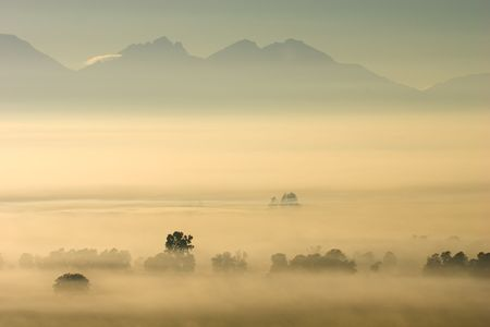 Trees in mist against a backdrop of mountains, early morning Stock Photo