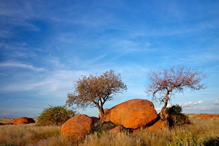 Landscape with granite boulders, trees and blue sky, Namibia, southern Africa Stock Photo - 4817112