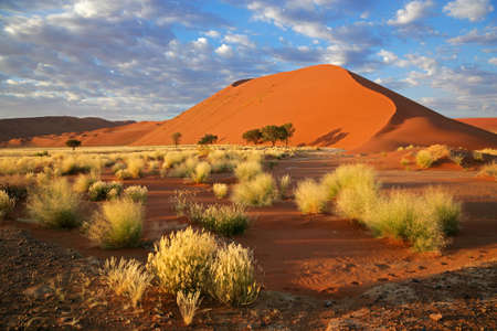 namib: Landscape with desert grasses, large sand dune and sky with clouds, Sossusvlei, Namibia, southern Africa