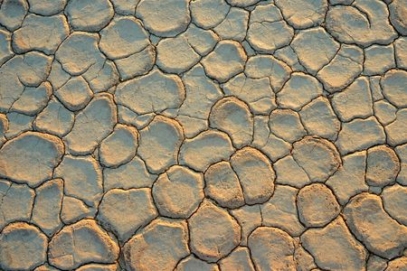 onset: Cracked mud at the onset of a drought
