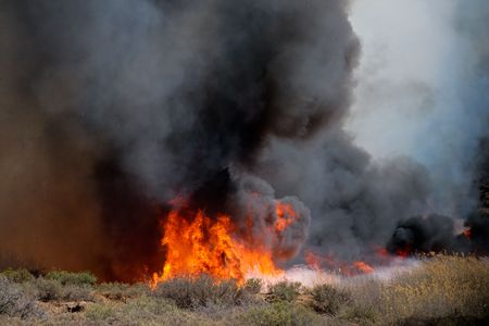 feroz: Fierce brushfire with flames and black smoke
