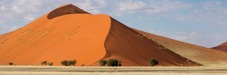 Panorama landscape of a red desert sand dune, Sossusvlei, Namibia, southern Africa Stock Photo - 6162898