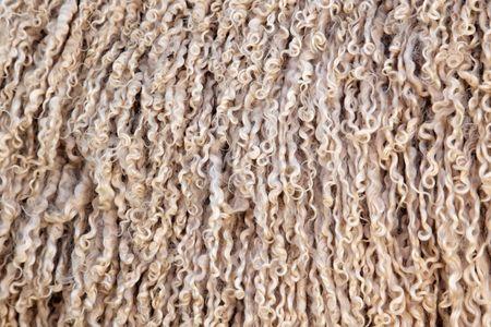 mohair: Angora goat wool (mohair) background  Stock Photo