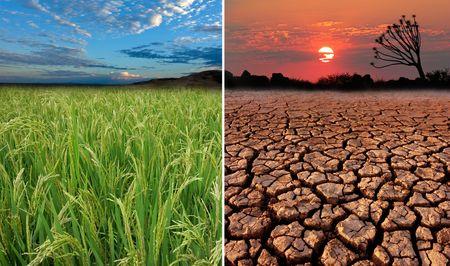 nieużytki: Koncepcyjne obrazy wykazania możliwych skutków globalnego ocieplenia